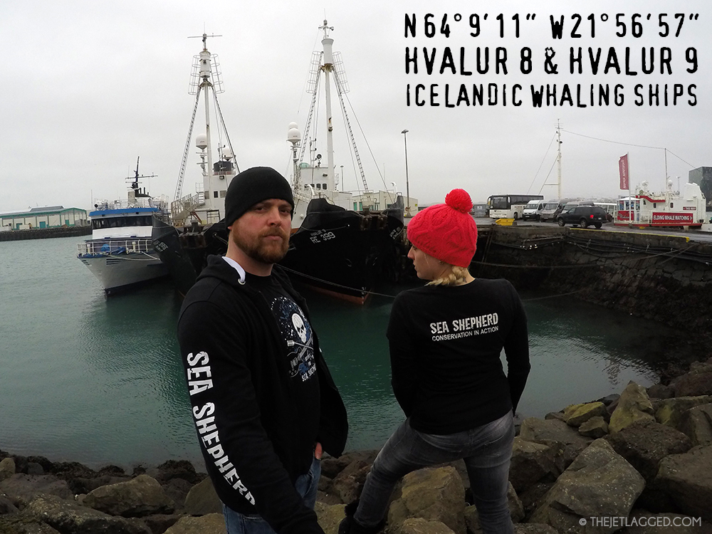 The Jetlagged in front of Icelandic whaling vessels (harpoon ships) Hvalur 8 & 9