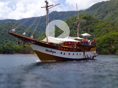 Wunderpus Liveaboard Komodo Diving