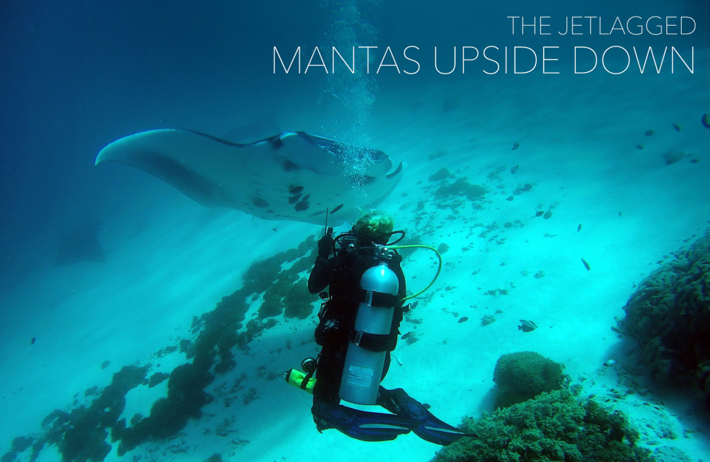 Claudia from The Jetlagged taking a manta ray ID shot. Photo taken by Mae Dauth.