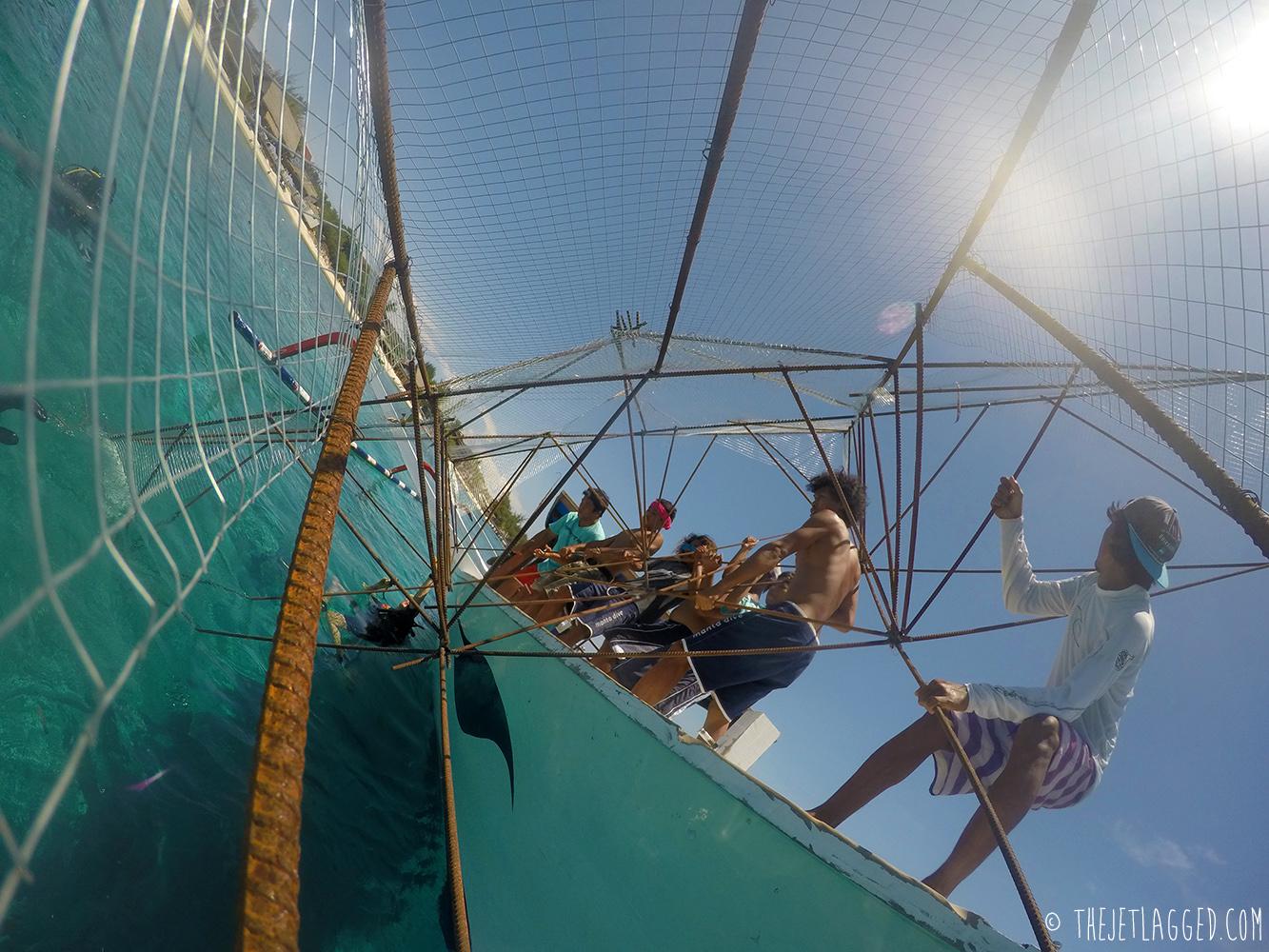 Sinking the Bintang Biorock from the Manta Dive Boat