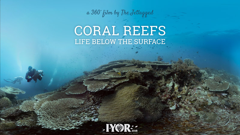 360 Coral Reefs | Life Below The Surface