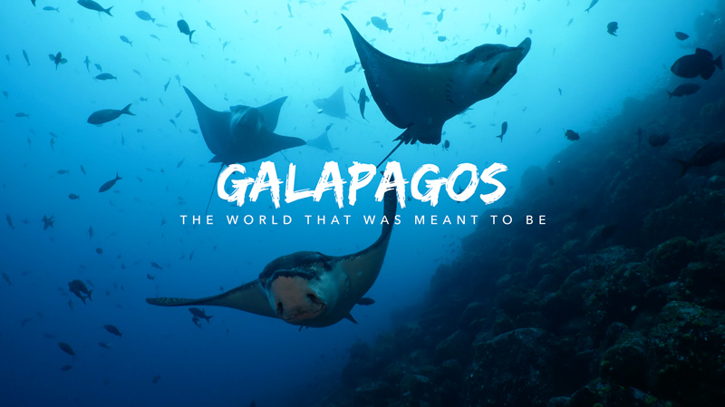 Galápagos - The world that was meant to be